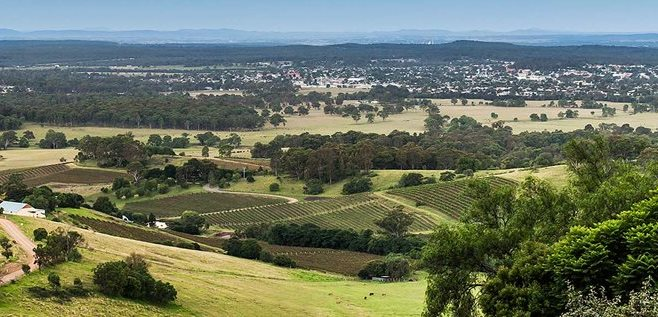 """Cessnock- gateway to wine country"""